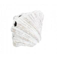 Dekorační mušle 11x15cm