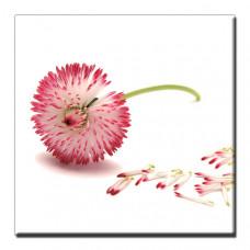 Obraz Pink Air